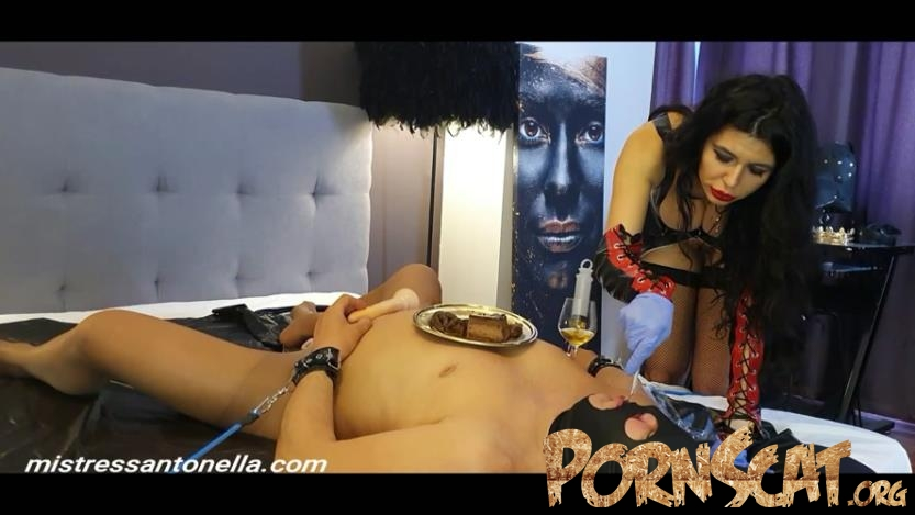 Birthday of the Supreme Goddess with MistressAntonellaSilicone  [FullHD / 2020]